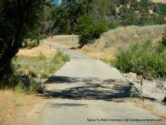 rough dry creek crossing
