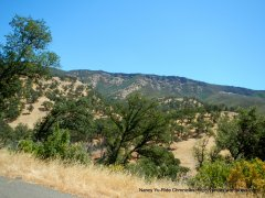 chaparral covered mountains