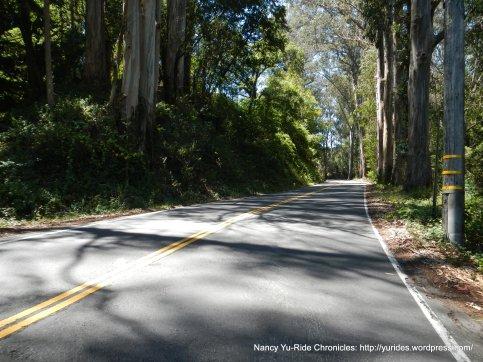 half mile climb to Dogtown