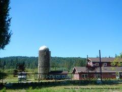 rural farm