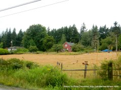 residential acreage