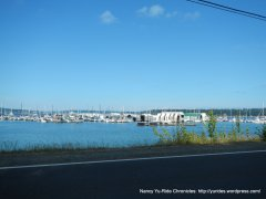 Brownsville Marina