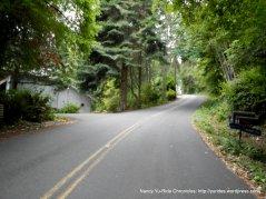 steep climb-NE Halls Hill Rd