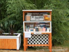 Little free library-Lake Stevens