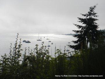 view of Puget Sound/marina area