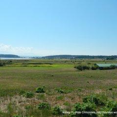 view of Crockett Lake area