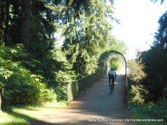 Forest Park Footbridge