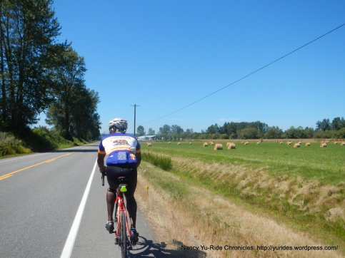 on Lowell Snohomish River Rd