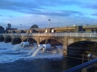 Ballard Locks