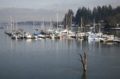 Quartermaster Harbor