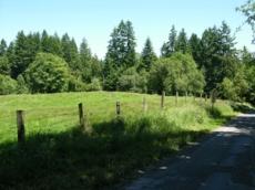 Vashon road