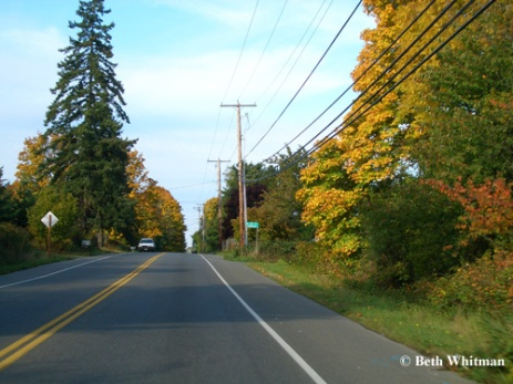 Vashon roads