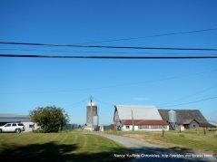 rcountry farms
