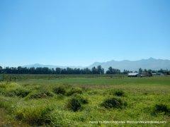 pastoral farms