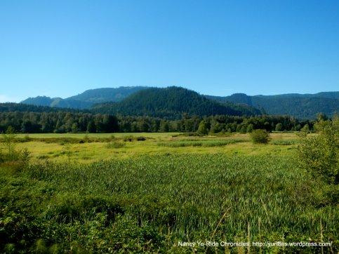 gorgeous mountain scene
