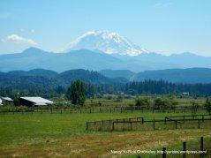 majestic Mt Rainier