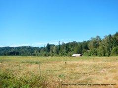 Green Valley meadows