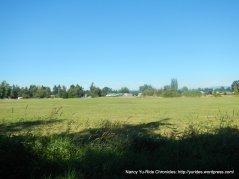 open green fields