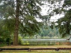 view of Ohop Lake