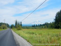 view of Mt Rainier