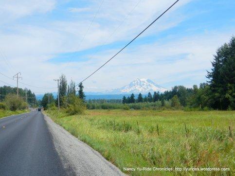 view of Mt Rainier