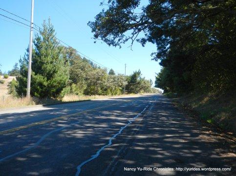 climb up Bodega Hwy