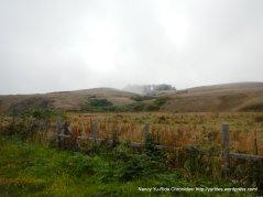 landscape on CA-1 S