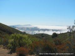 lingering layer of fog