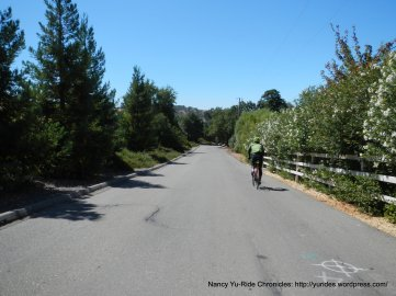 on Mt Diablo Scenic Blvd