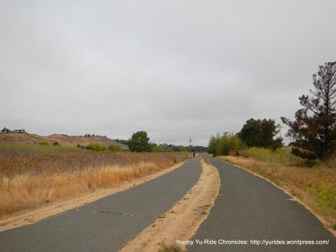 bike path thru park