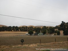 farmlands and pastures