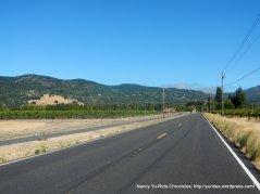 Grren Valley vineyards