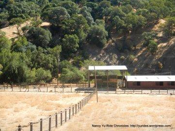 goat ranch