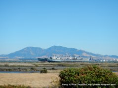 view of Mt Diablo & the Mothball Fleet