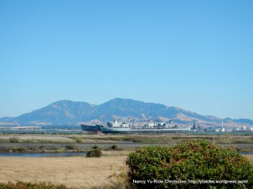 view of Mt Diablo & the Mothball Fleet