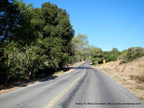 climb up Canyon Rd