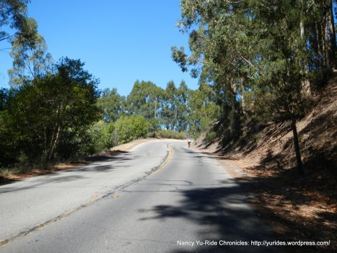 Grizzly Peak Blvd-
