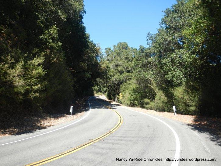 climb up south Pinehurst