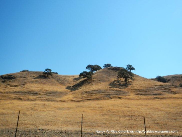 Sunol hills