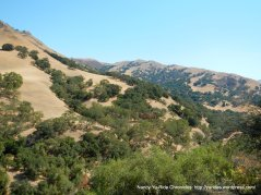 Sunol Wilderness hillsides