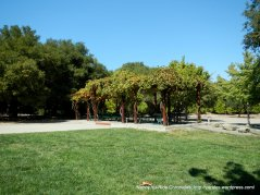 Sunol gazebo area