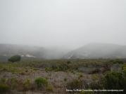 Montana De Oro hillsides