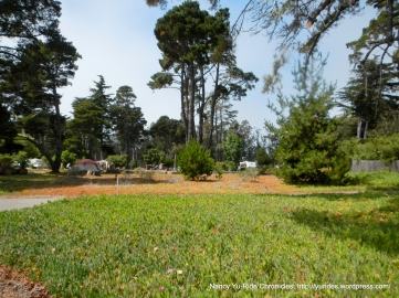 Morro Bay State Park campground