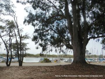 Morro Bay marina