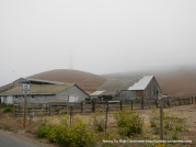 ranches and barns