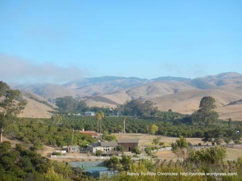 Cayucas valley