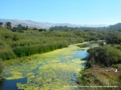 San Simeon Creek