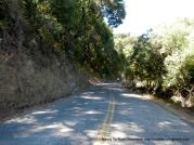 See Canyon Rd