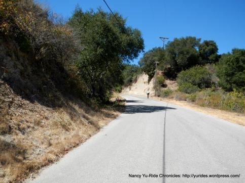 1.4 mile climb