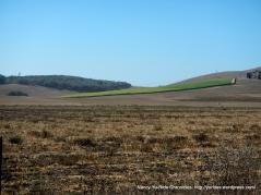Los Osos valley